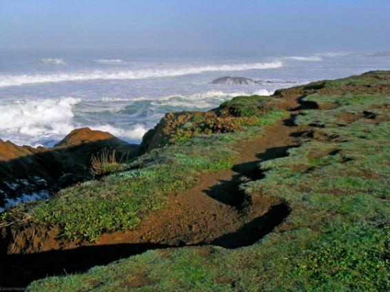 Ocean Scene4